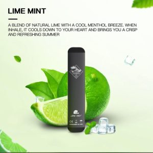 Tugboat V2 Lime Mint Disposable Vape