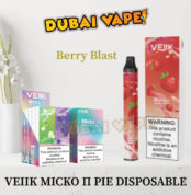 Berry Blast Disposable Vaporizer